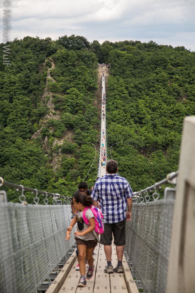 Geierlay-Brücke