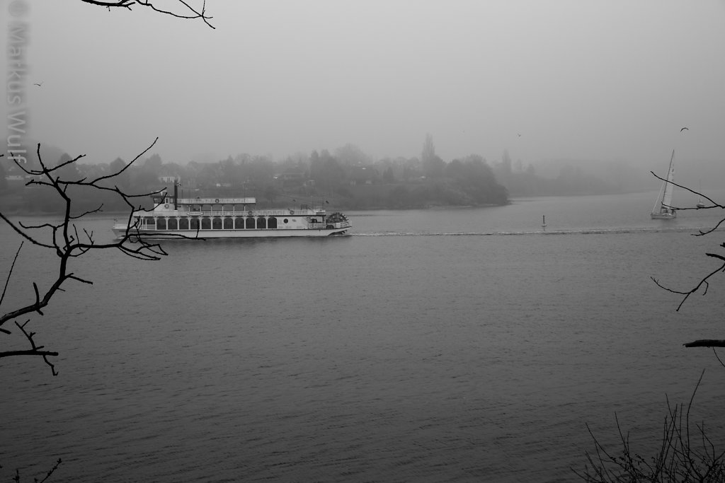 Nebel-Schlei(er)